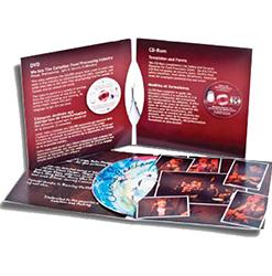 4 Panel CD-DVD Jackets Printing