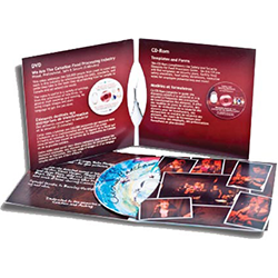4 Panel CD-DVD Jackets Printing