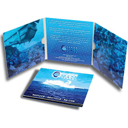 6 Panel CD-DVD Jackets Printing Service